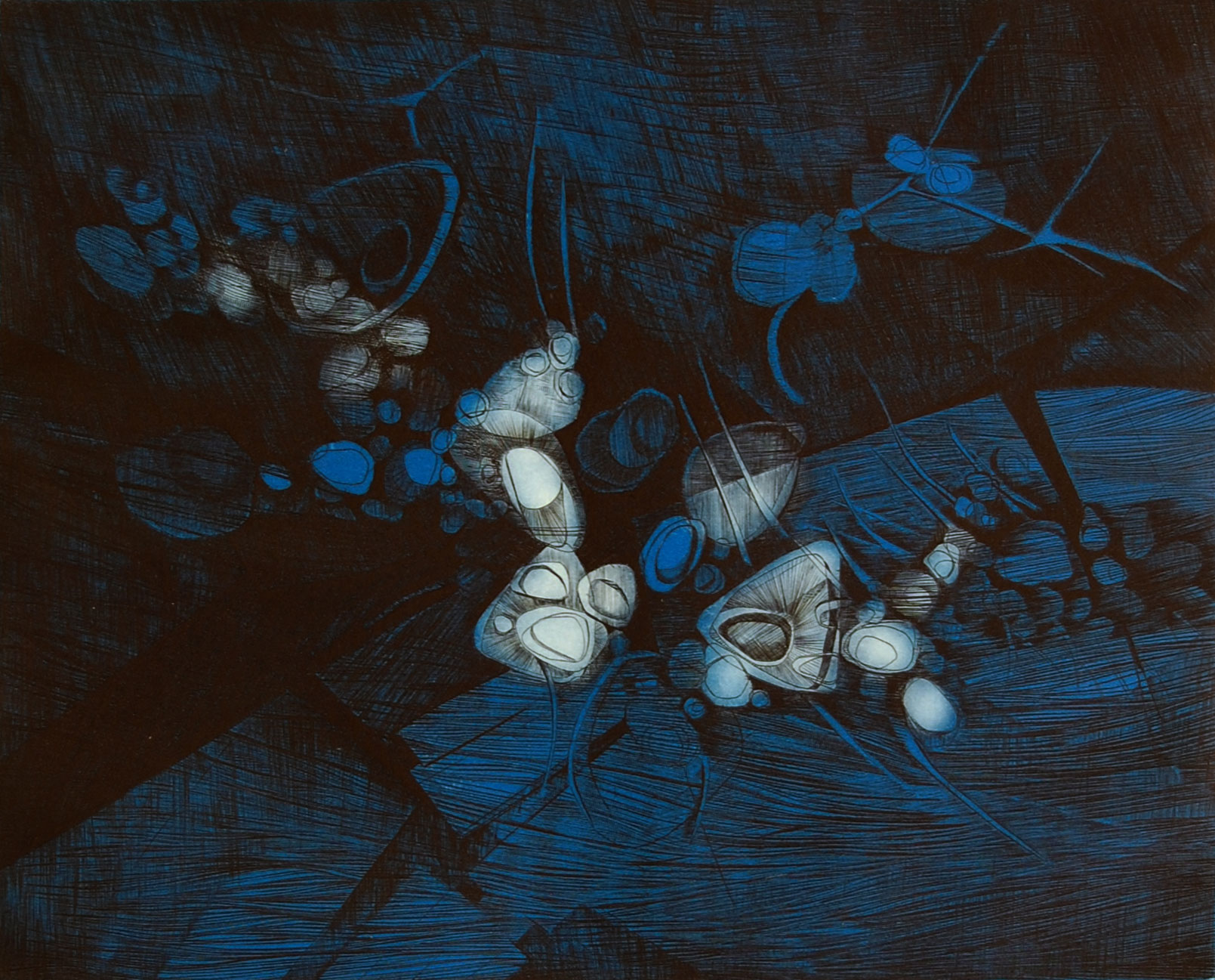 Anne Breivik – Night flowers, dyptrykk, 35,5 x 28,5 cm