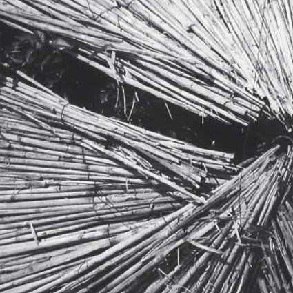 """Miodrag Mladjovic -detail- """"Sunshade"""" digital print 2007"""